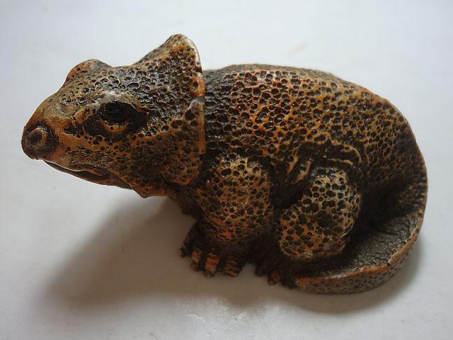 Miniatura de Triceratops
